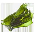 екстракт от водорасли