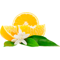 портокалова цветна вода